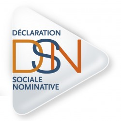 logo dsn Déclaration Sociale Nominative